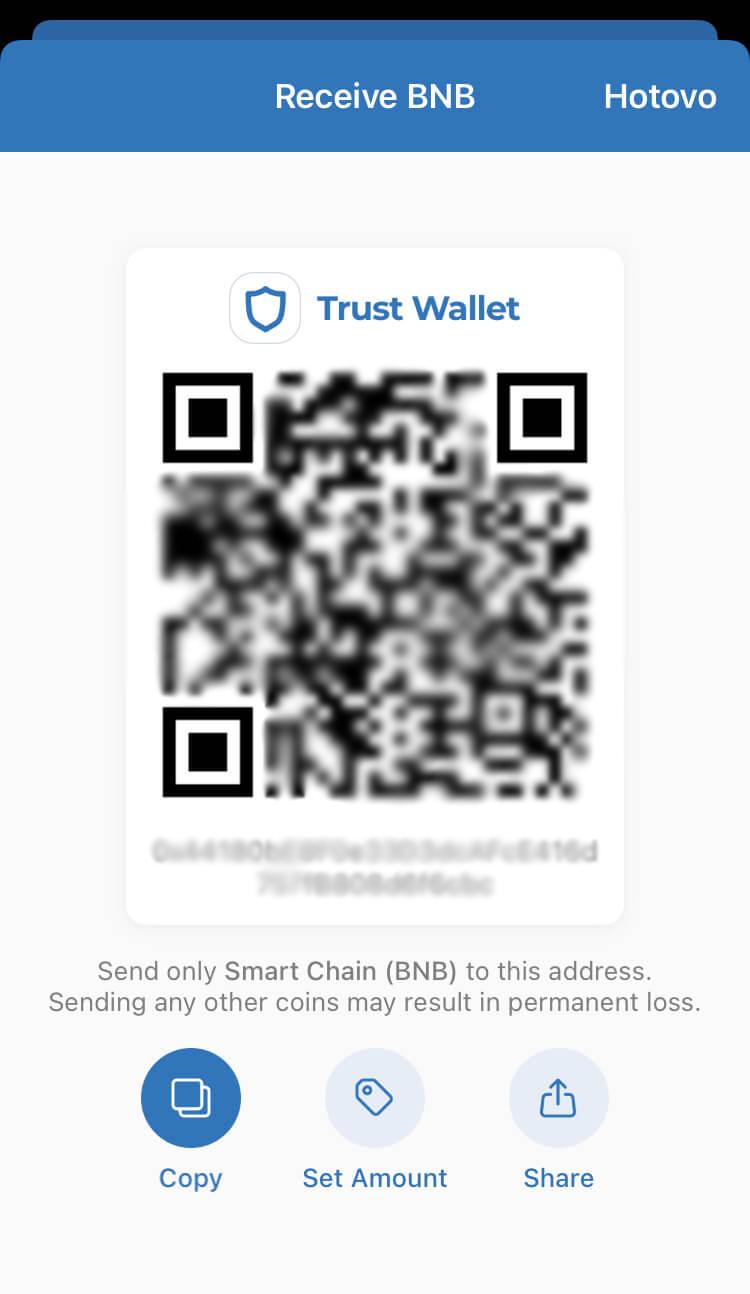 Trust Wallet - Smart Chain BNB - Recieve